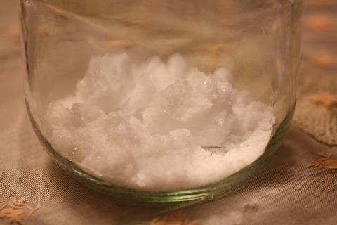 レモン塩_6