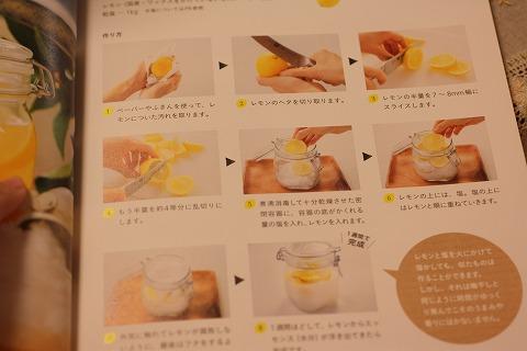 レモン塩_3