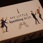2015年12月分のMY LITTLE BOX(マイリトルボックス)届きました!【ネタバレあり】